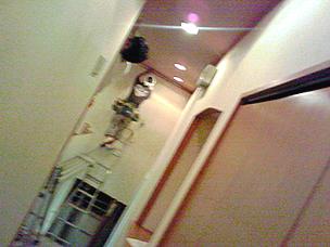 2007_8_21_1.jpg